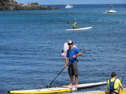 Animal é destaque em travessia no Havaí