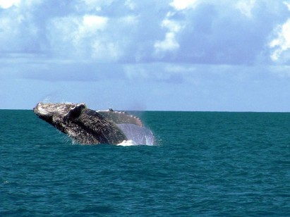 Abrolhos (BA) / Blog do Planalto