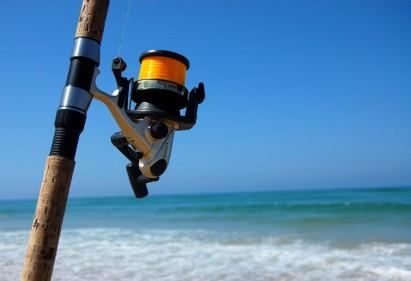 Vai pescar? Escolha a vara certa!