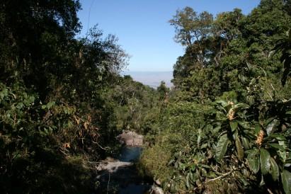 Parque Nacional do Itatiaia (RJ)