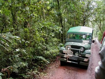 Parque Nacional do Iguaçu (PR)